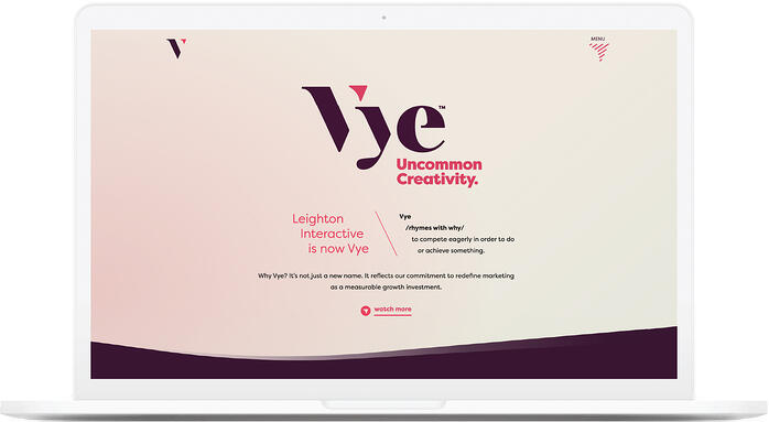Vye-Website copy 2